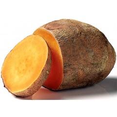 Boniato o batata. Caja de 4Kg aprox- Agotado